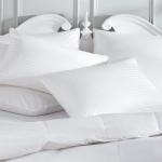 Polyastr Pillow1